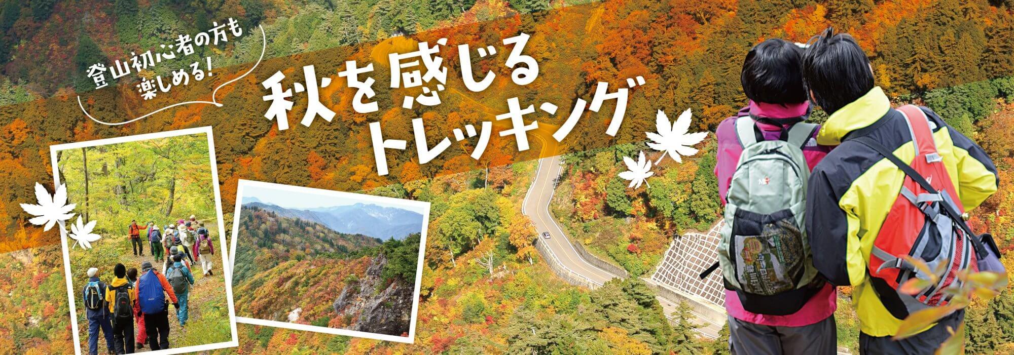 秋のトレッキング特集!