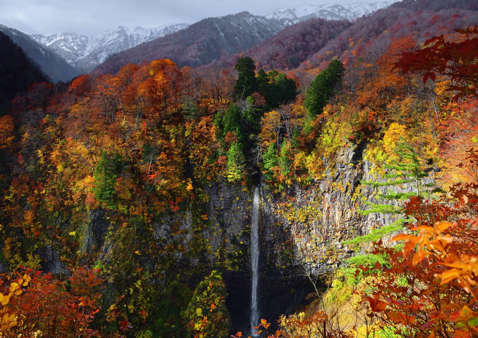 紅葉の大白川渓谷ハイキングツアー